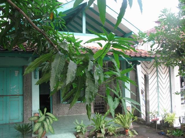 Rumah sebelum gempa.