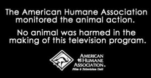 no-animals-harmed